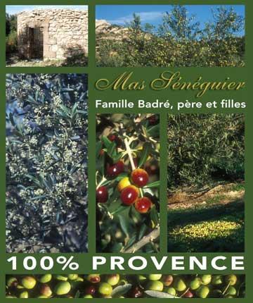 Mas Sénéguier producteur huile olive provence paca domaine familial